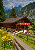Swiss Home with Flowers