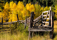 Corral and Aspen Trees - Ridgway, CO